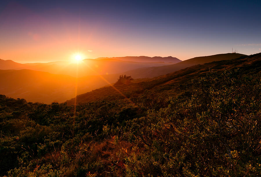 Marin County Sunset by Alexis Birkill