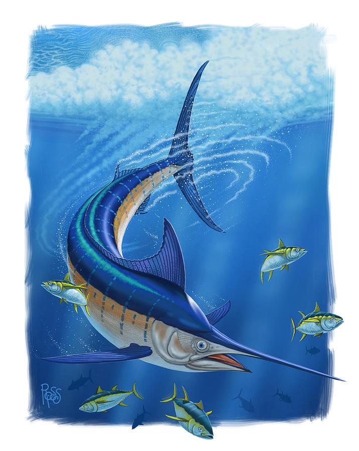 Marlin by Scott Ross