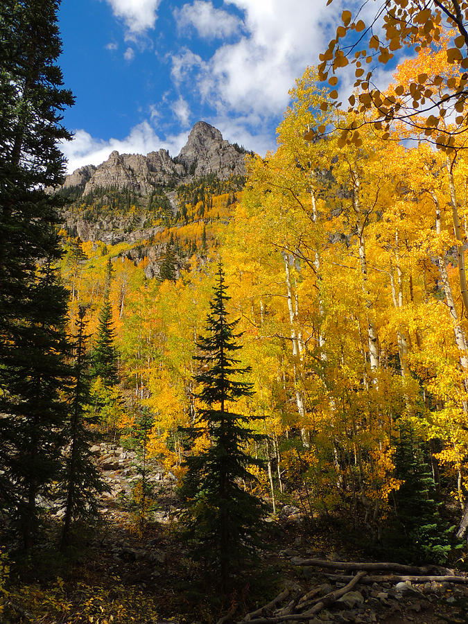 Aspen Photograph - Maroon Bells Color by Steve Anderson