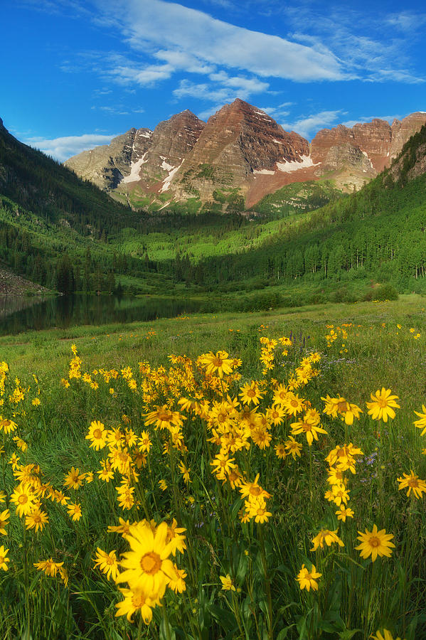 Colorado Landscapes Photograph - Maroon Summer by Darren  White