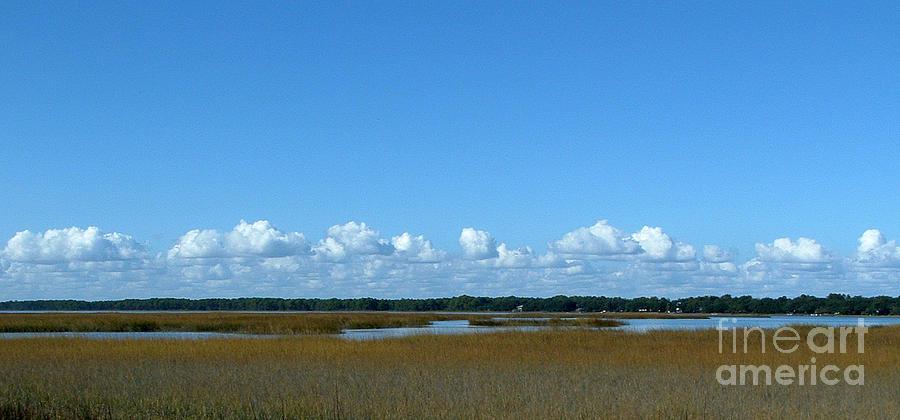 Marsh Photograph - Marsh In Panacea Florida by Audrey Peaty