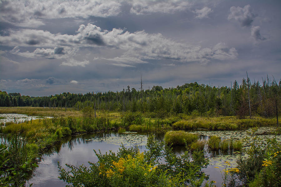 Marsh Photograph - Marsh Under The Clouds by Jason Brow