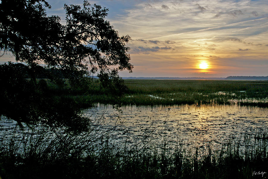 Sunrise Photograph - Marsh View by Phill Doherty