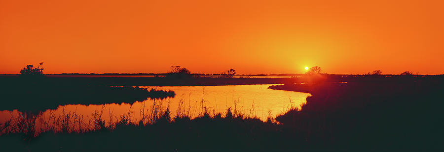 Horizontal Photograph - Marshland At Dusk, Bayou Country, Route by Panoramic Images