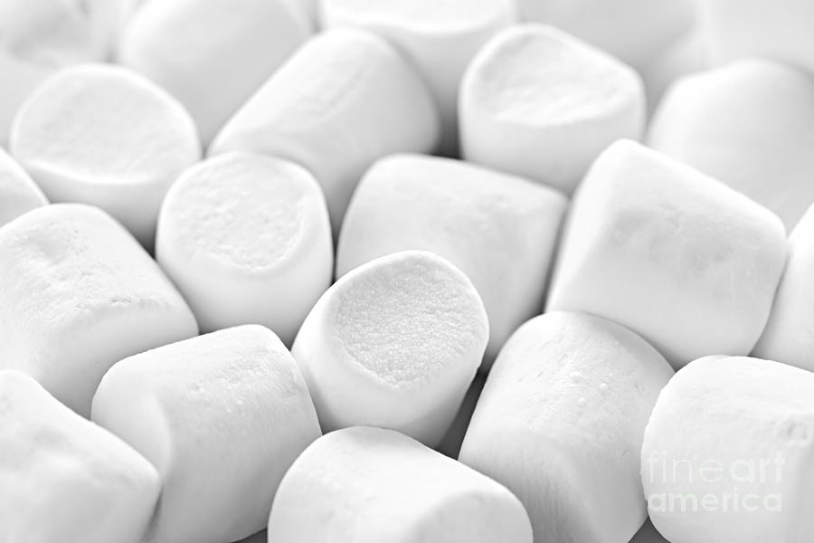 Marshmallows Photograph - Marshmallows by Elena Elisseeva