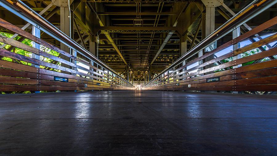 Milwaukee Photograph - Marsupials Eye View by Randy Scherkenbach