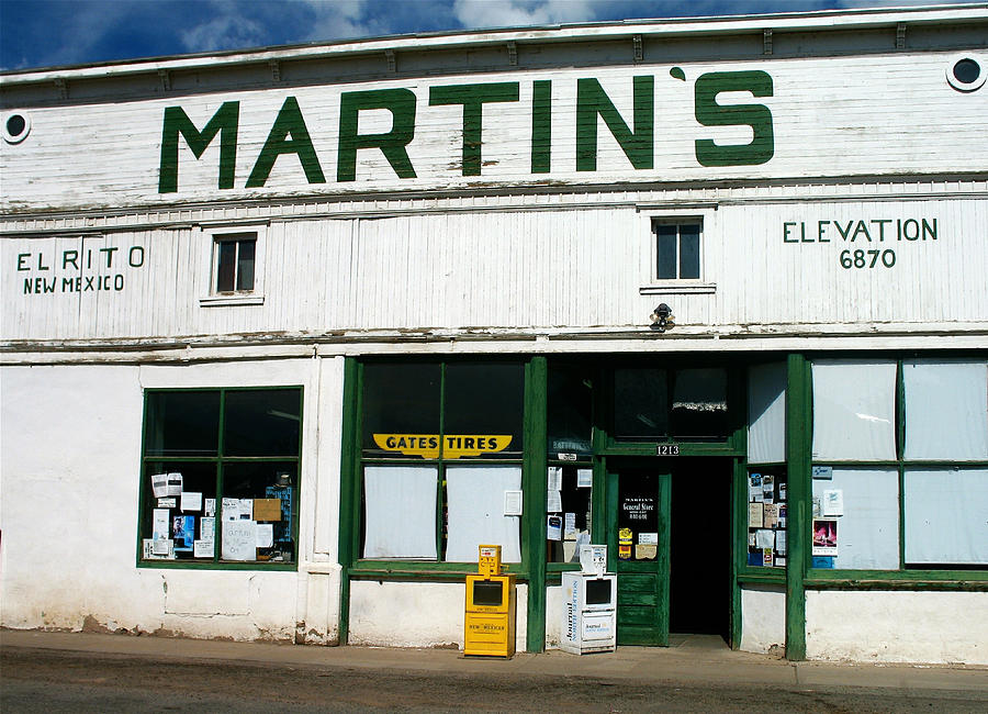 Martin's Photograph - Martins by Gia Marie Houck