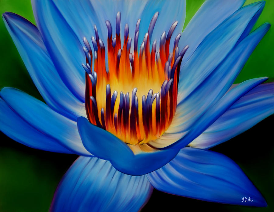 Water Lily Painting - Marvel by Laura Bell