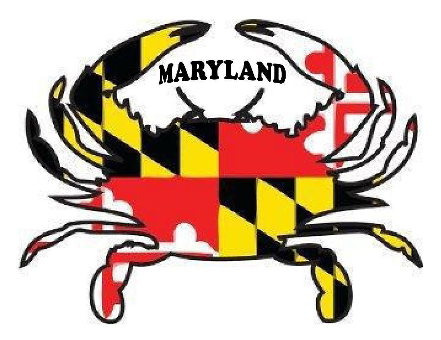 maryland crab drawing by bern hopkins blue crab clip art free free blue crab clipart vector