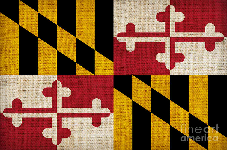 Maryland Painting - Maryland State Flag by Pixel Chimp