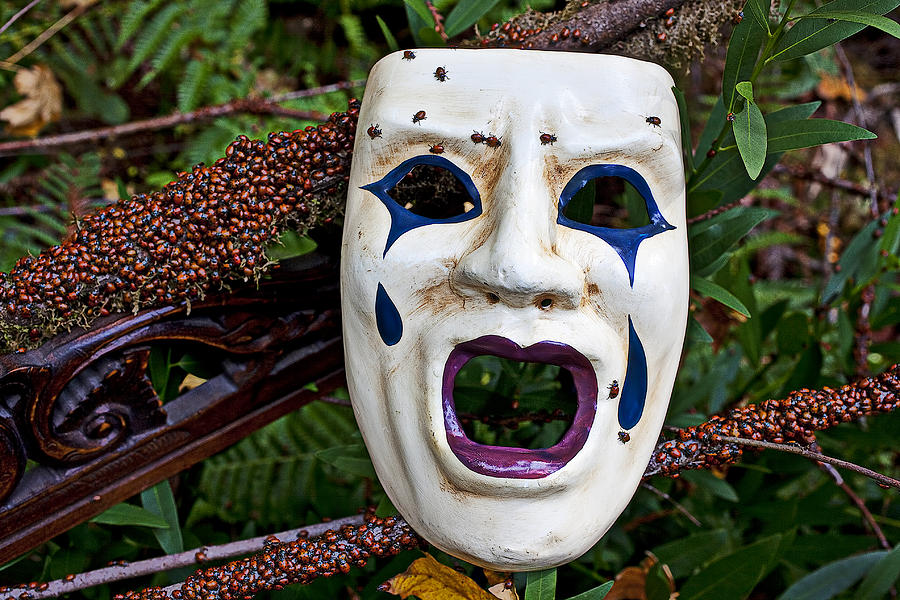 Horizontal Photograph - Mask And Ladybugs by Garry Gay