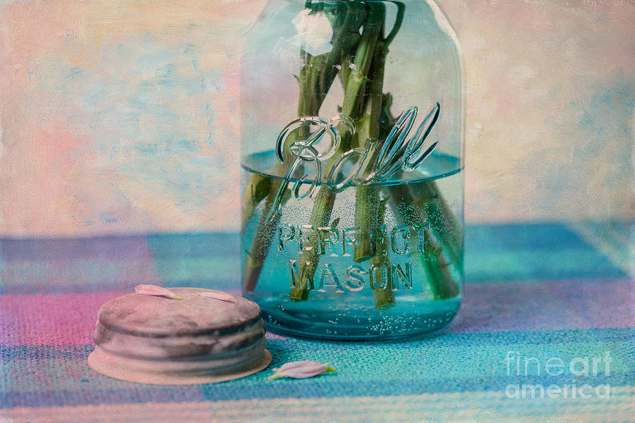 Mason Jar Photograph - Mason Jar Vase by Kay Pickens