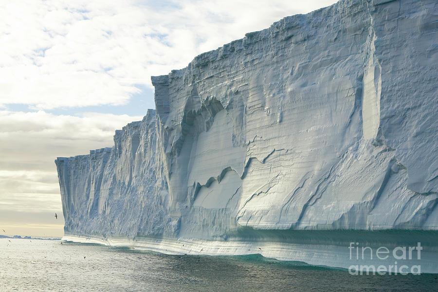 Massive Iceberg, South Georgia Photograph by Yva Momatiuk John Eastcott