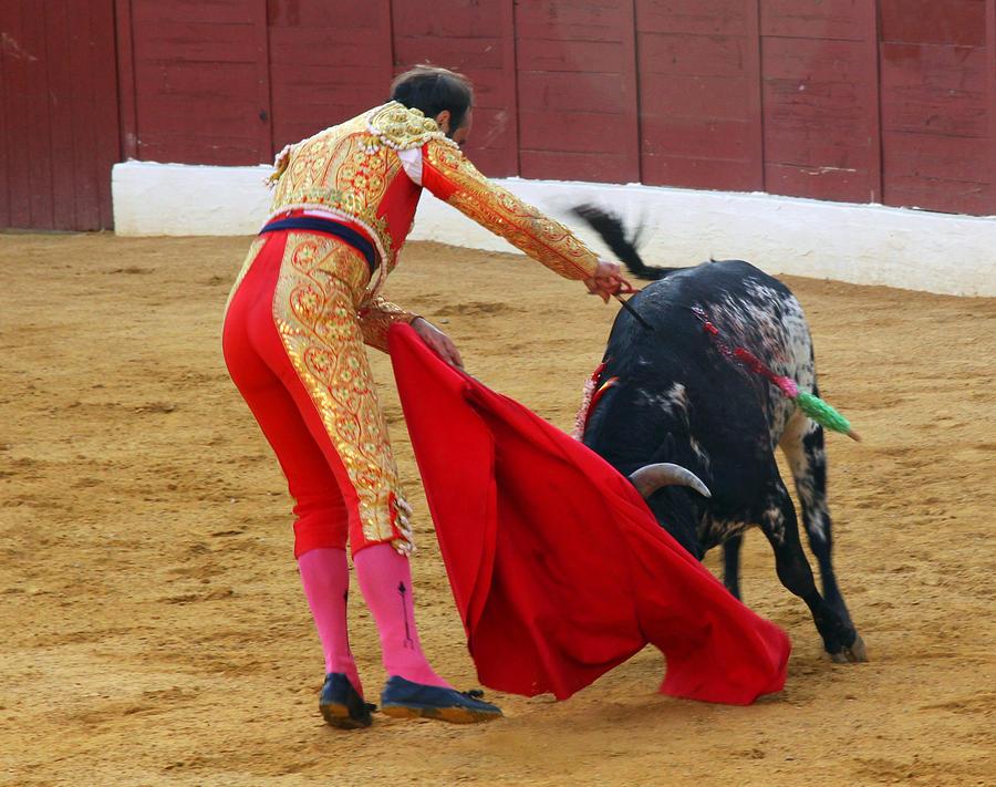 Matador Photograph - Matador Stabbing Bull by Dave Dos Santos