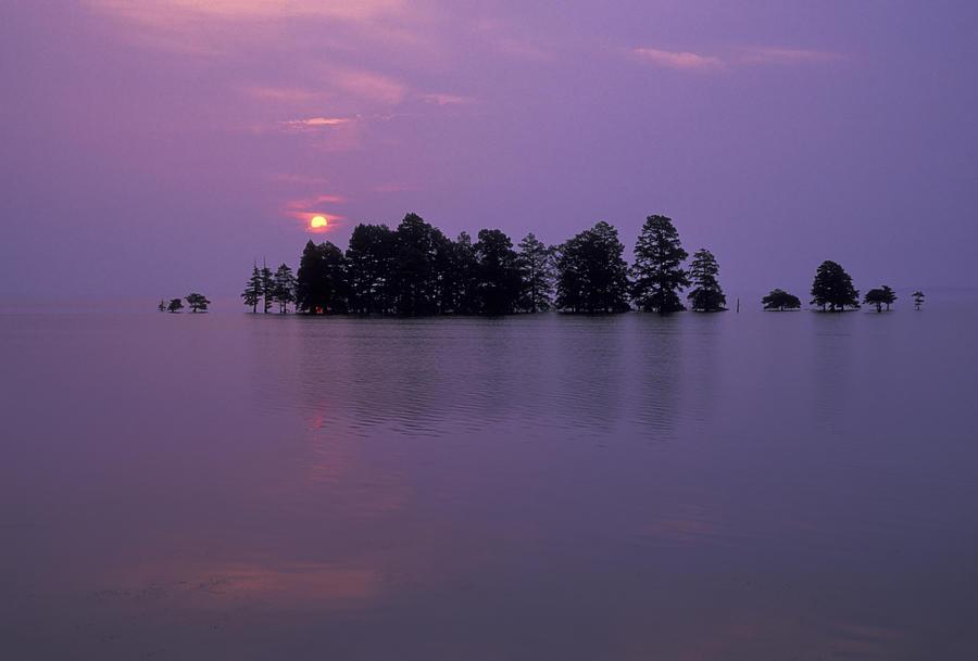 Mattamuskeet Sunrise by Jim Dollar