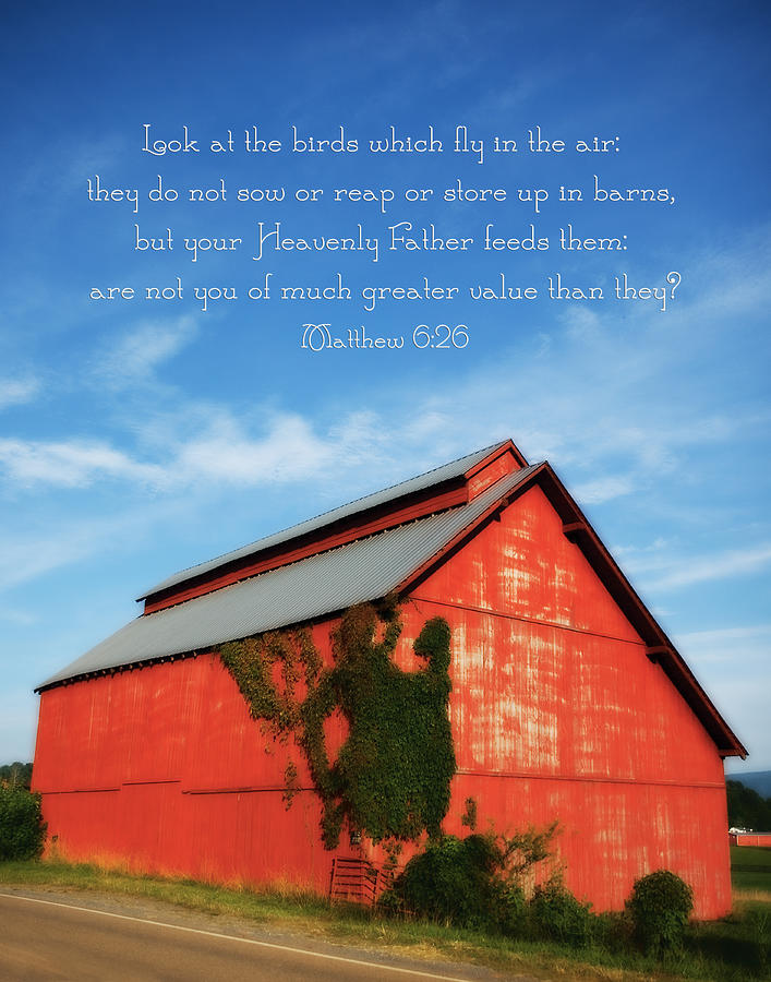 Matthew 6:26 Photograph - Matthew 6 26 Scripture Red Barn by Denise Beverly