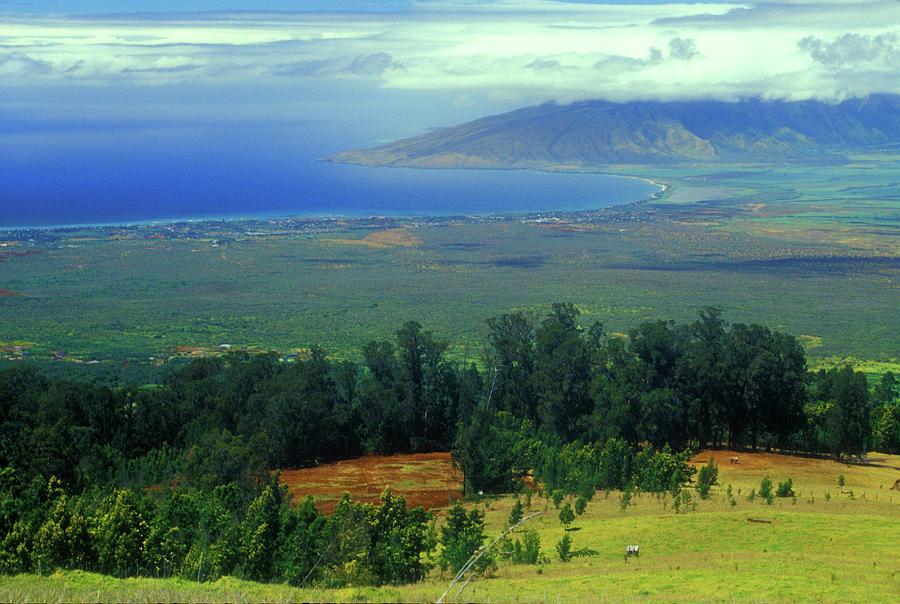 Hawaii Photograph - Maui Hawaii Upcountry View by John Burk