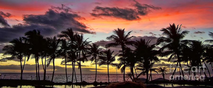 Maui Photograph - Maui Sunset by Jack Schultz