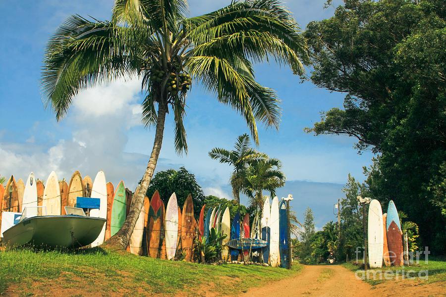 Maui Surfboard Fence Photograph - Maui Surfboard Fence - Peahi by Sharon Mau