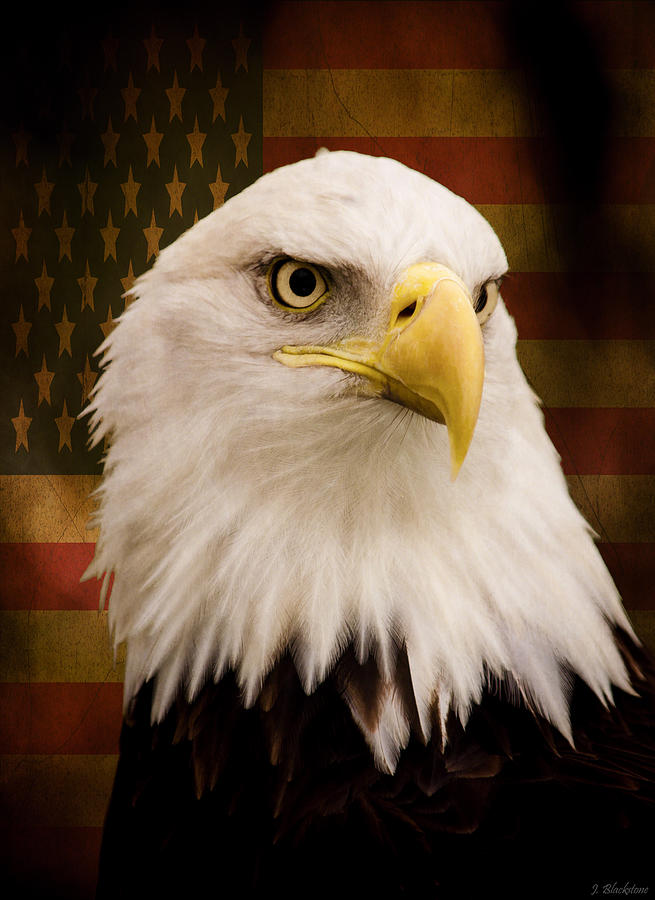 America Photograph - May Your Heart Soar Like An Eagle by Jordan Blackstone