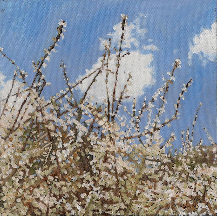 Mayflower Painting - Mayflower by Helen White