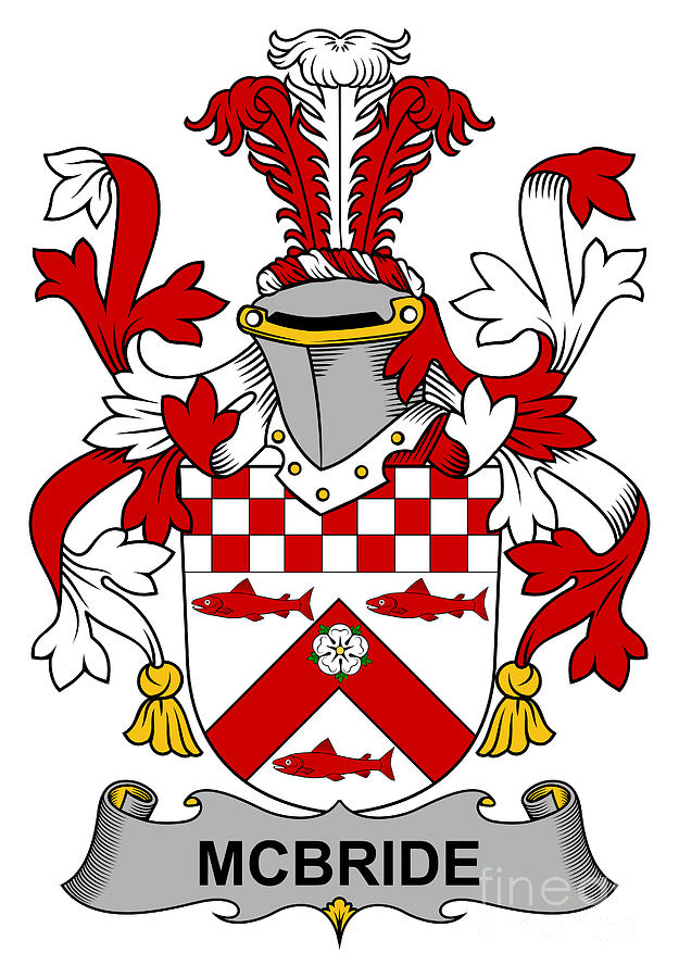 family crest coat of arms free to view your family - 625×900