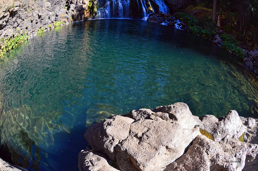 Water Fall Photograph - Mccloud River Pool by Donna Blackhall