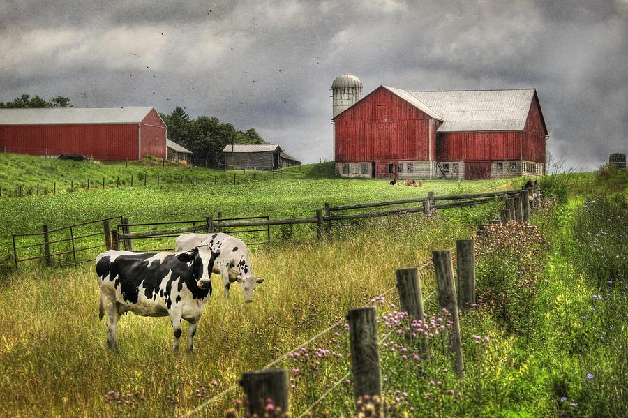 Barn Photograph - Mcclure Farm by Lori Deiter