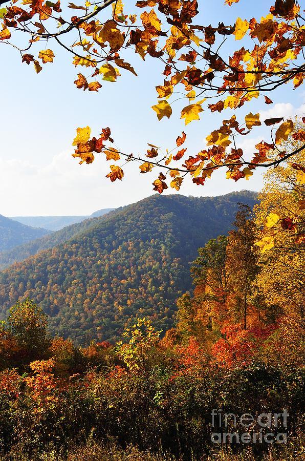 Autumn Photograph - Mcguire Mountain Overlook by Thomas R Fletcher