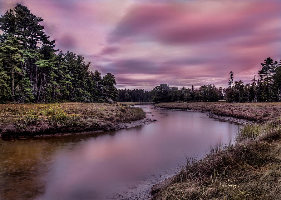 Meandering Inlet by Steve Zimic