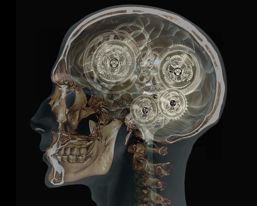 Brain Photograph - Mechanical Brain by Zephyr/science Photo Library