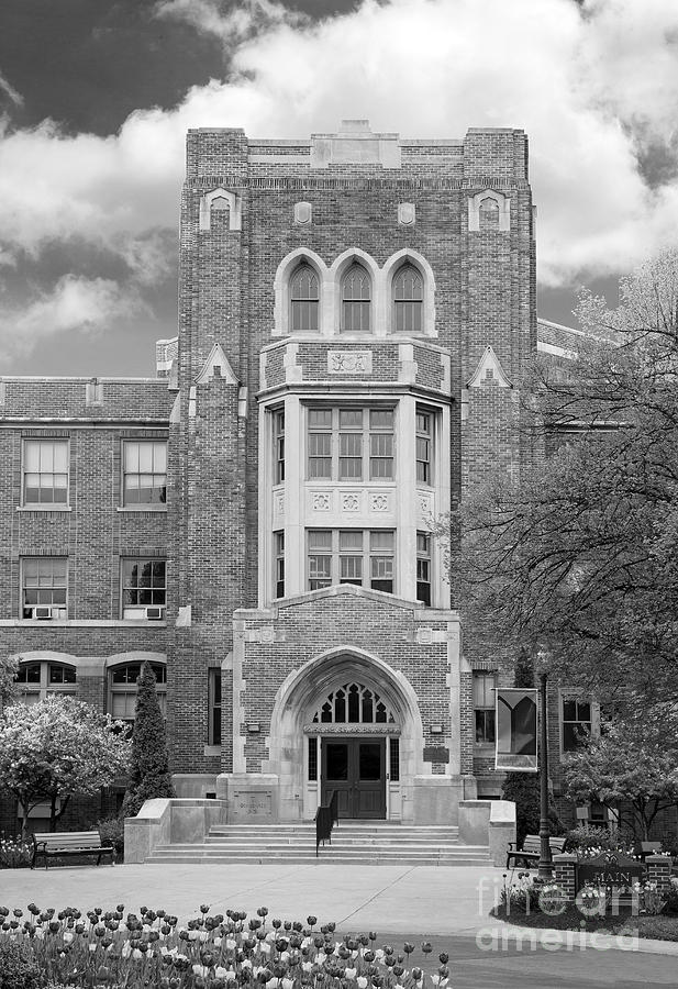 Buffalo Photograph - Medaille College Main Building by University Icons