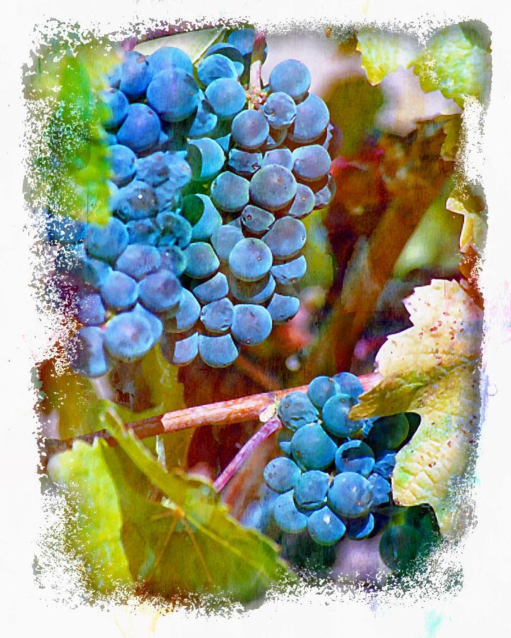 Wine Grapes Digital Art - Medal Winner II by Ken Evans