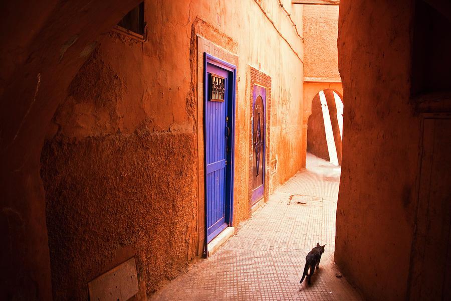Medina Of Marrakesh Photograph by Moreiso