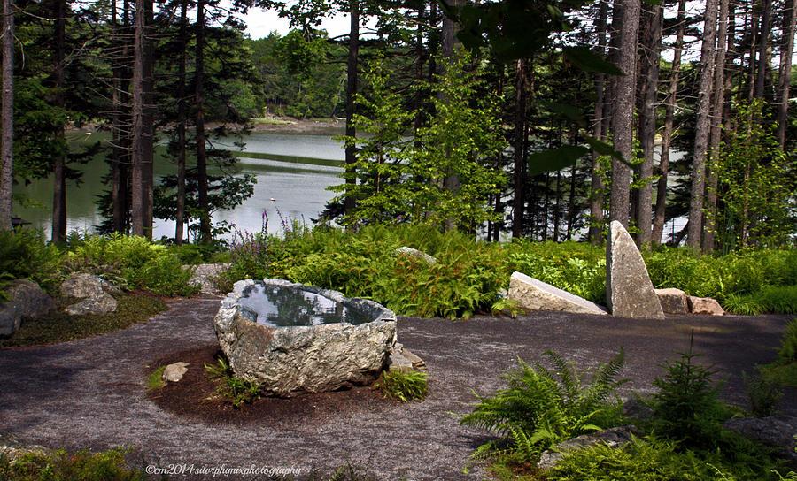 Meditation Garden Reflective Pool Photograph