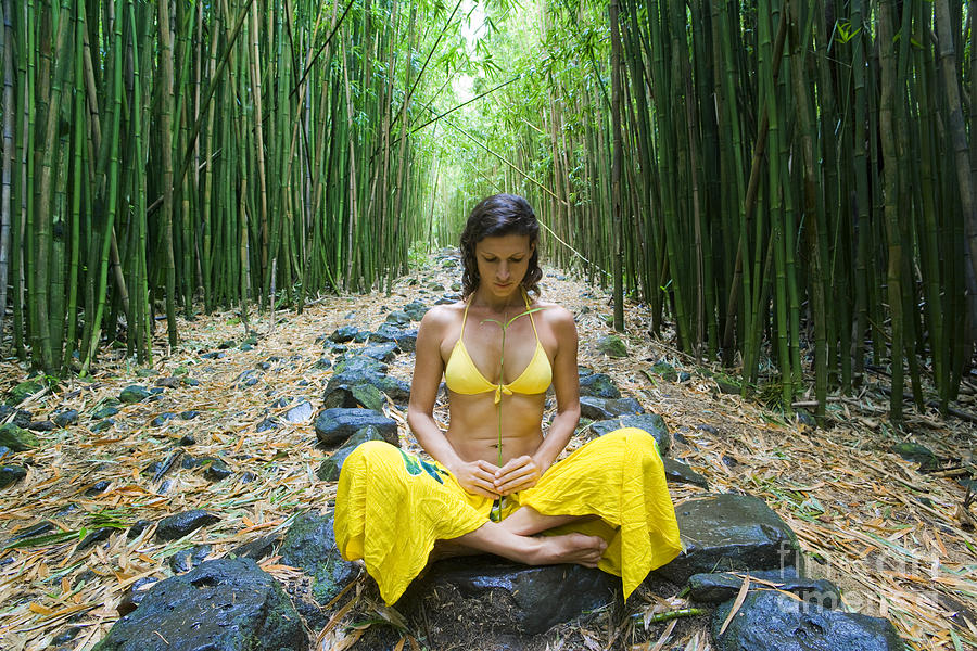 Bamboo Photograph - Meditation In Bamboo Forest by M Swiet Productions
