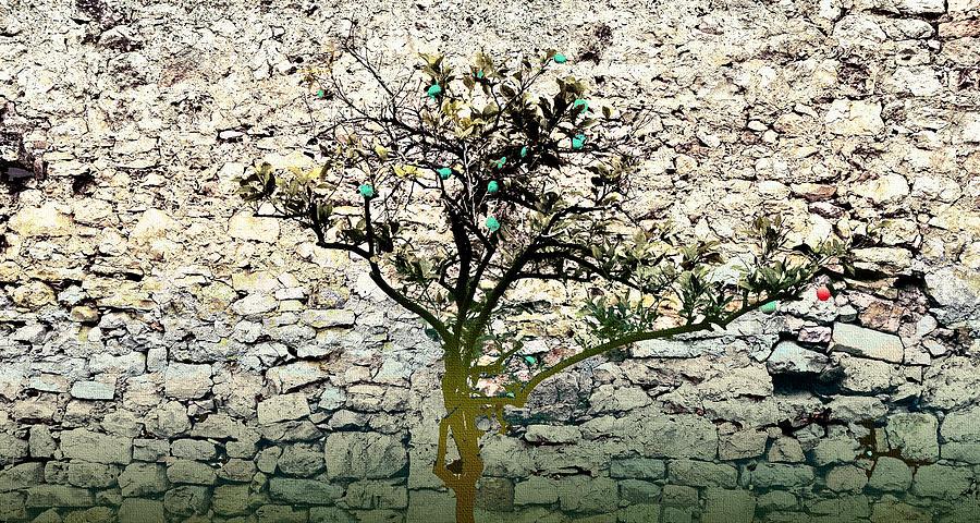 Hvar Island Photograph - Mediterranean Garden With An Old Wall by Arsenije Jovanovic