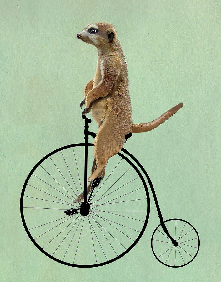 Penny Farthing Framed Prints Digital Art - Meerkat On A Black Penny Farthing by Kelly McLaughlan