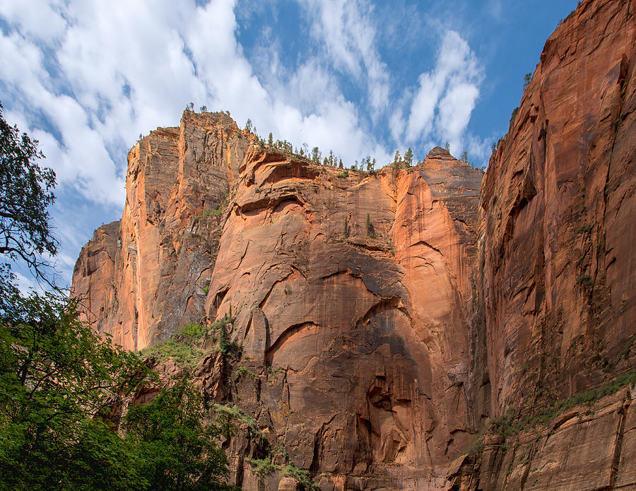 Meet at the Corner of Zion Canyon by John M Bailey