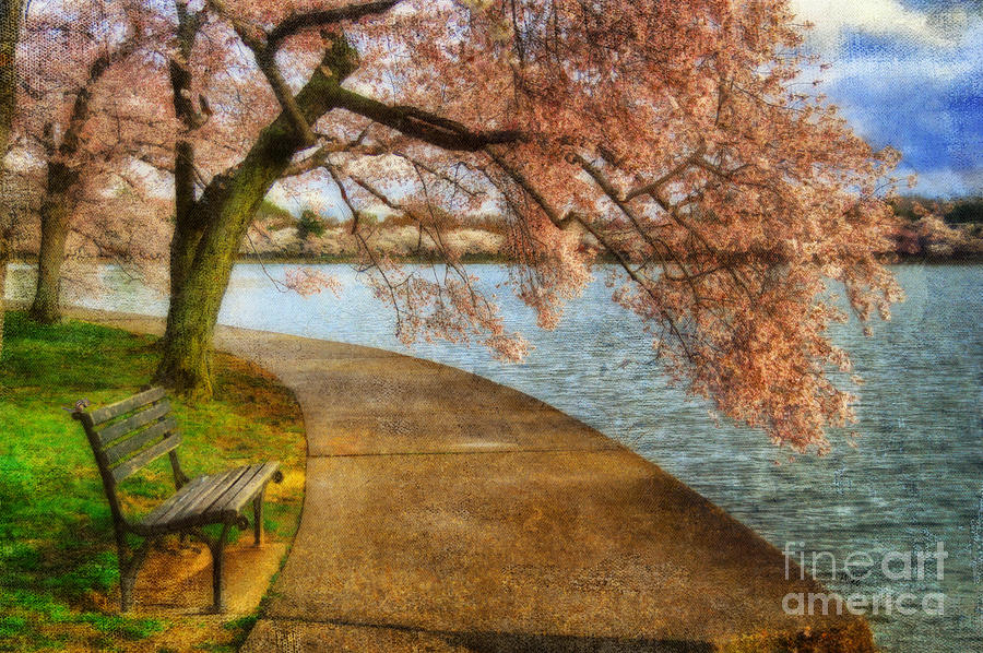 Bench Photograph - Meet Me At Our Bench by Lois Bryan