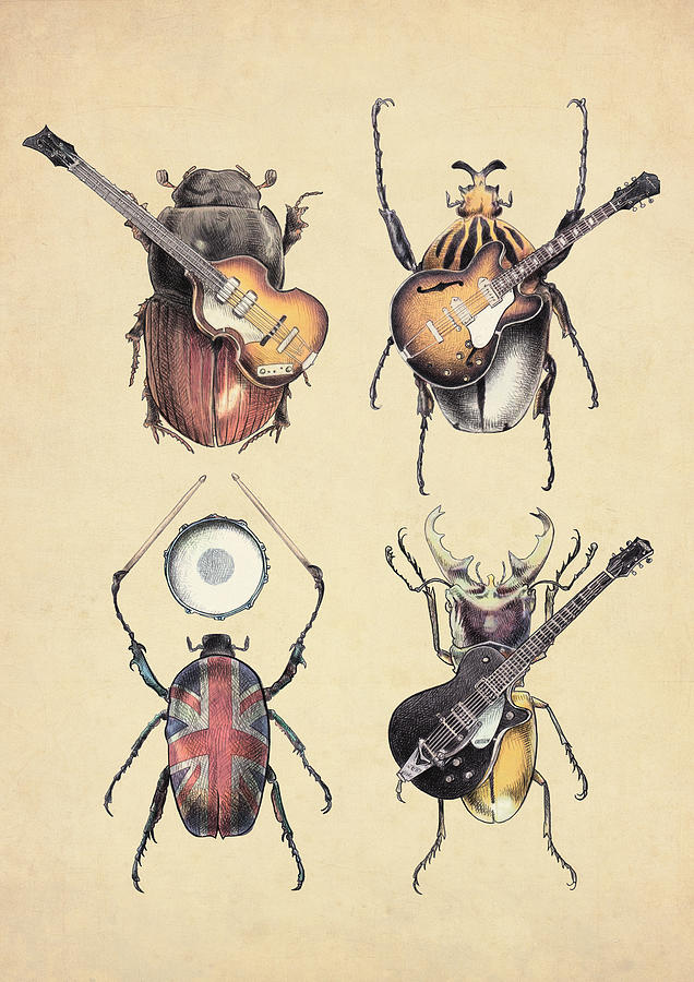 Beatles Digital Art - Meet The Beetles by Eric Fan