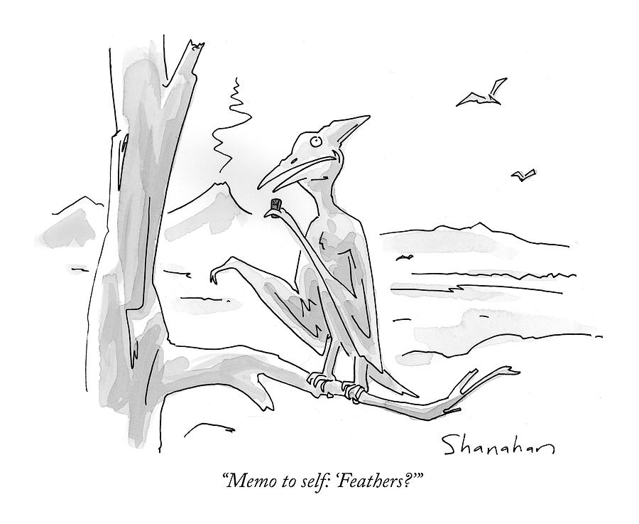 Memo To Self: feathers? Drawing by Danny Shanahan