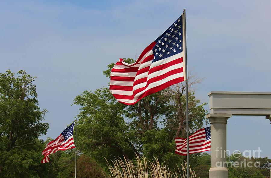 Flag Photograph - Memorial Day Flags With Blue Sky by Robert D  Brozek