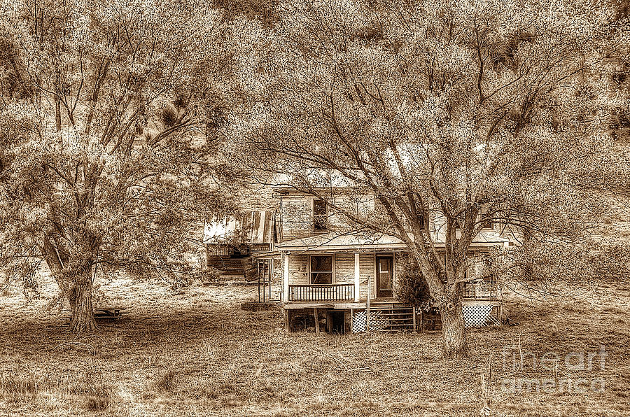 Old House Photograph - Memories Behind The Trees by Dan Friend