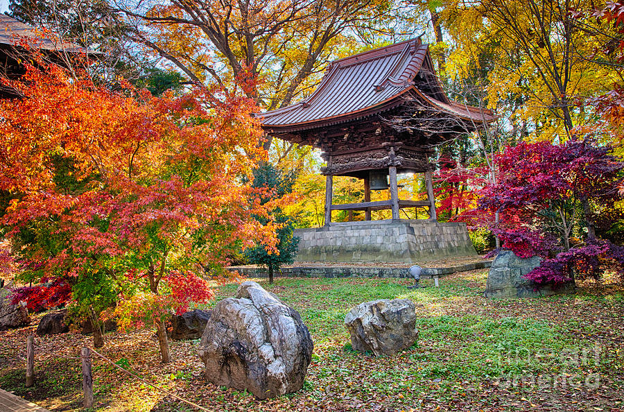 Japan Photograph - Memories of autumn-4 by Tad Kanazaki