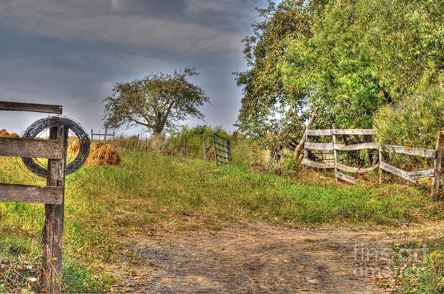 Mending Fences Photograph by Krista Hott