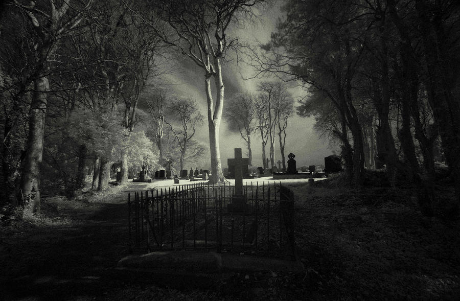 Menlo Cemetery Photograph by Peter Skelton
