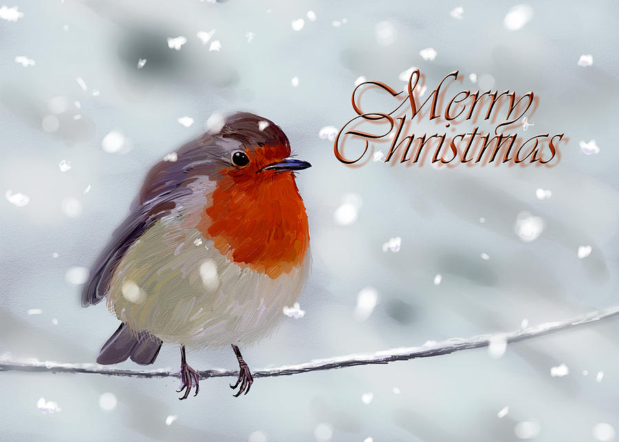 Merry Christmas Robin Digital Art By Arie Van Der Wijst