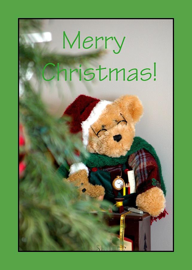 Merry Christmas Bear 0722 Photograph