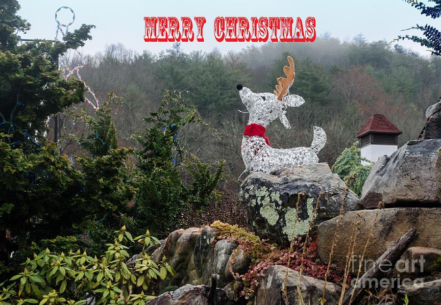 Helen Georgia Christmas.Merry Christmas From Helen Georgia